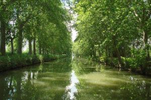 river near Montpellier