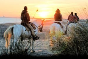 Balade à cheval en Camargue