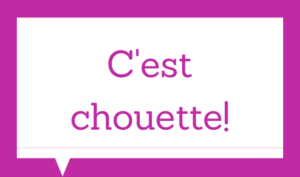 Basic french expressions - C'est chouette