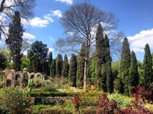 Jardin Plantes