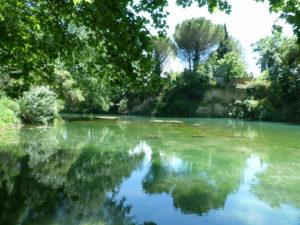 Parque Meric