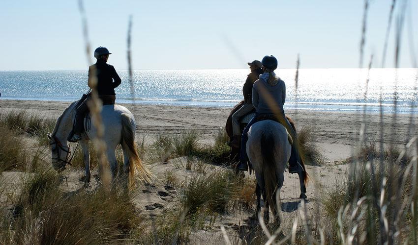 Balade cheval Camargue
